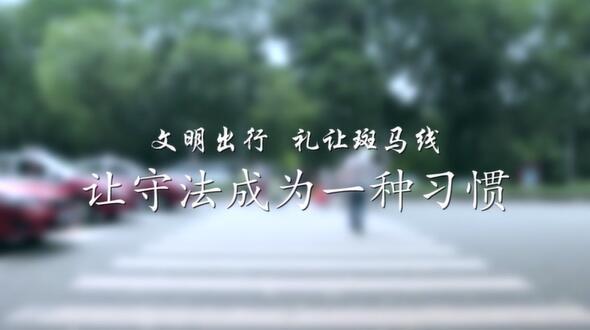 普法公益视频 礼让斑马线篇