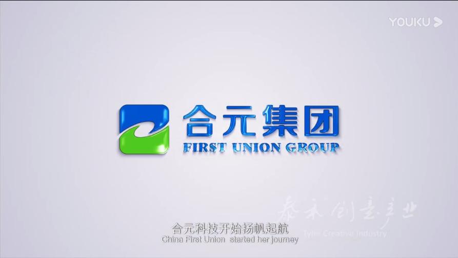 合元集团2019年中文版